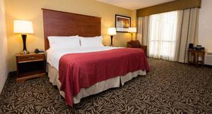 King Room at Holiday Inn Wilmington