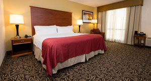 King Room at Holiday Inn Wilmington